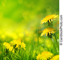 красивая, весна, цветы, задний план