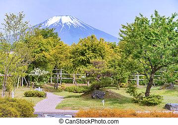 красивая, гора, сад, красочный, fuji, цветы, пейзаж
