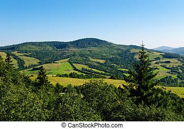 красивая, гора, trees, зеленый, carpathians, пейзаж