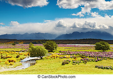 красивая, долина
