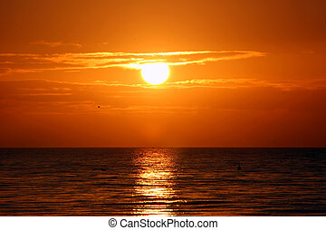 красивая, остров, флорида, восход, sanibel