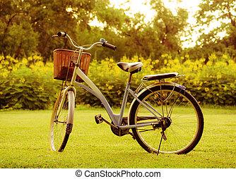 красивая, парк, велосипед, пейзаж