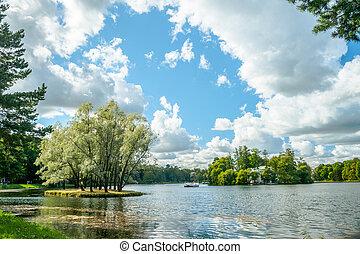 красивая, русский, пейзаж, willows