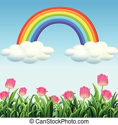 красивая, цветок, сад, место действия