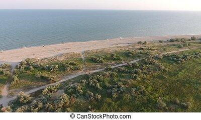 красивая, bushes, рейс, над, grasses., морское побережье