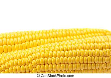 кукуруза, белый, isolated