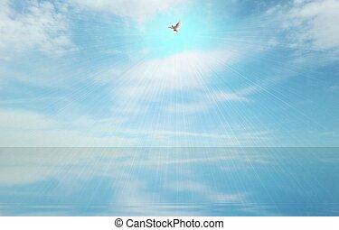 легкий, луч, and, святой, дух