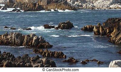 лесок, тихий океан, скалистый, петля, берег