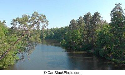 лес, антенна, река, сосна