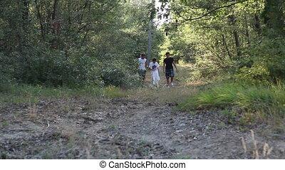 лес, гулять пешком