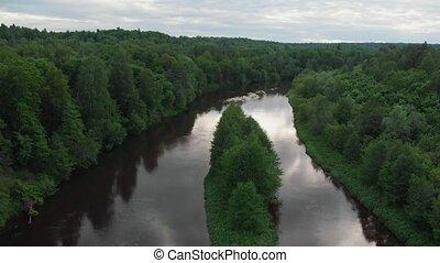 лес, два, -, река, хвойный, divides, halves, пейзаж, природа...