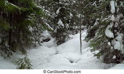лес, зима, снегопад