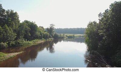 лес, -, между, река, хвойный, пейзаж, природа