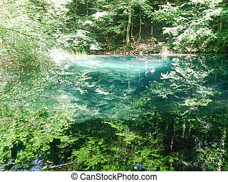лес, река, в, mountains, природа, пейзаж, with, trees, and, river.