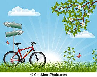 лето, велосипед, пейзаж