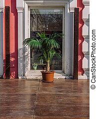 лето, горшок, дерево, окно, пальма, cafe.
