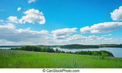 лето, озеро, кастрюля, пейзаж