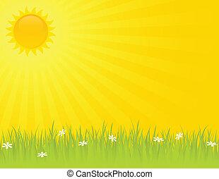 лето, солнечно, день