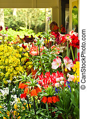 магазин, весна, цветок