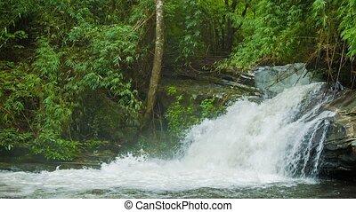 маленький, таиланд, водопад, лес