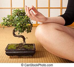 медитация, безмятежность