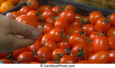 медленный, вишня, мо, chooses, рынок, помидоры, помидор, крупный план, покупка, человек