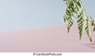 медленный, розовый, background., гладкий; плавный, полный, ...