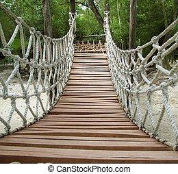 мост, деревянный, канат, джунгли, подвеска, приключение