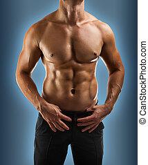 мускулистый, мужской, торс, закрыть, вверх