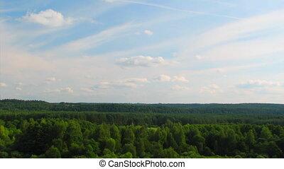 над, timelapse, clouds, лес