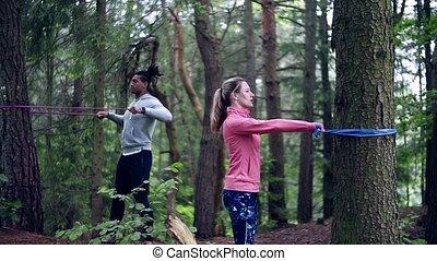 на открытом воздухе, упражнение, дерево, bands, пара,...