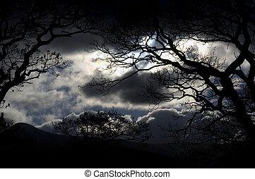 небо, озеро, район, ночь