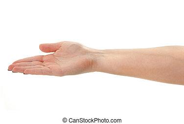 невидимый, объект, держа, женский пол, рука