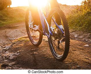 низкий, угол, посмотреть, of, велосипедист, верховая езда, гора, велосипед, след, в, восход