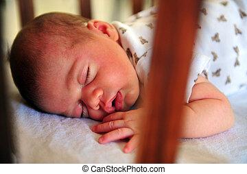 новорожденный, детка, спать