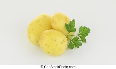 новый, клубень, картошка