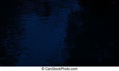 ночь, лесистая местность, бассейн