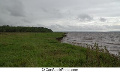 облачный, банка, под, река, трава, day., небо, ветреный