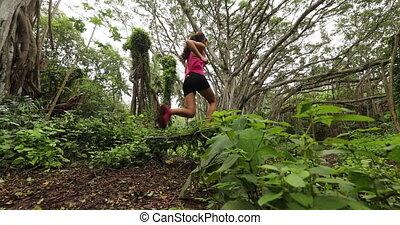 обучение, женщина, след, лес, за работой, бегун, бег, вне, -, дерево, маклер