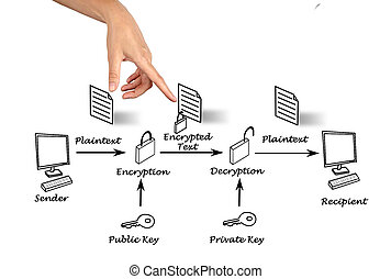 общественности, ключ, шифрование