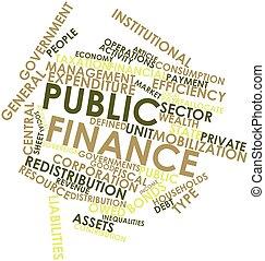 общественности, финансы