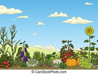овощной, сад, постель
