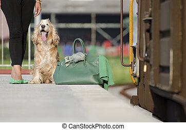ожидание, на, поезд, станция