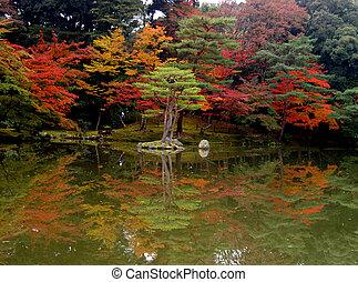 осень, отражение