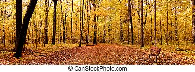 осень, панорама
