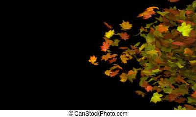 осень, переход, лист