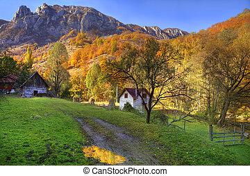 осень, сельский, пейзаж
