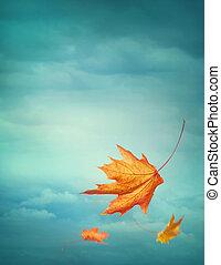 осень, falling, leaves