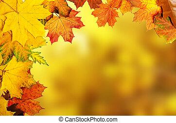осень, leaves, рамка
