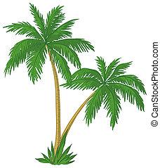 пальма, trees